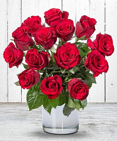 geburtstagsblumen sind immer das richtige geschenk valentins blumenversand blumen und. Black Bedroom Furniture Sets. Home Design Ideas