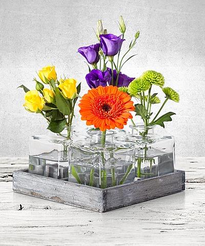 geburtstagsblumen sind immer das richtige geschenk. Black Bedroom Furniture Sets. Home Design Ideas