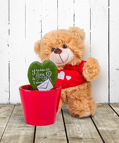 weltfrauentag topfpflanzen vom blumen und geschenkeversand valentins valentins. Black Bedroom Furniture Sets. Home Design Ideas