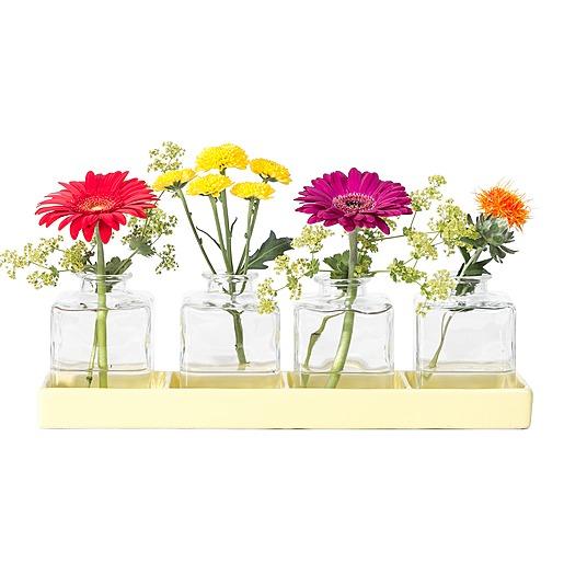 Vasen Set Lebensfreude