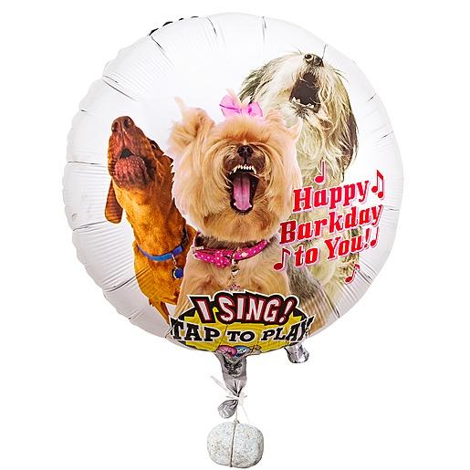 Singender Ballon Tierische Geburtstagsgrüße Hunde und Kuchen im Glas Geburtstag