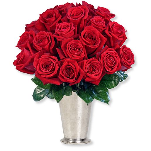 #20 langstielige rote Premium-Rosen#