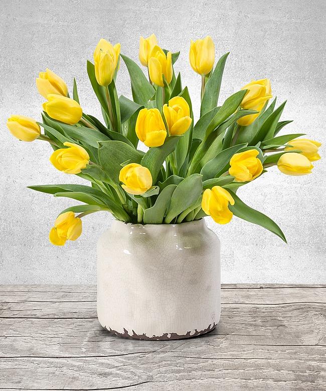 20 gelbe tulpen und gute laune tee jetzt bestellen bei. Black Bedroom Furniture Sets. Home Design Ideas