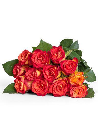 Rosen Online Bestellen Langstielige Rote Rosen Verschenken