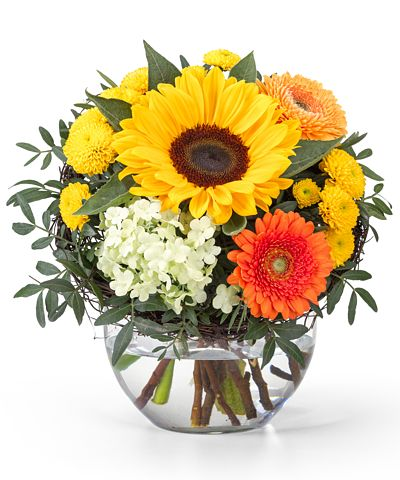 Blumen als geschenk verschicken