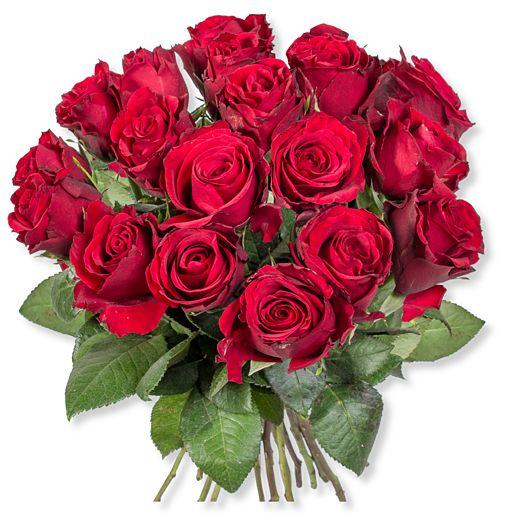 18 rote Rosen und Piccolo Alles Liebe zum Muttertag