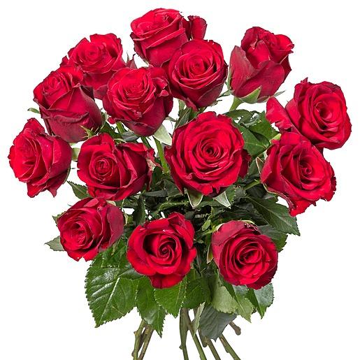 14 rote Rosen und Piccolo Alles Liebe zum Muttertag