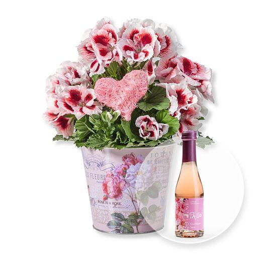 Nützlichblumen - Edelgeranie im Nostalgietopf und Kirschblüten Secco - Onlineshop Valentins