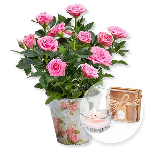 - Rosafarbene Rose im romantischen Nostalgie Topf und Herz Kerze - Onlineshop Valentins