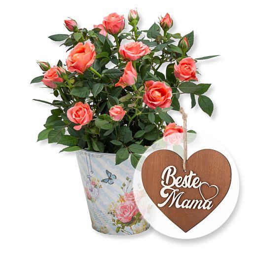 Orangefarbene Rose im romantischen Nostalgie-Topf und 3D-Holz-Herz Beste Mama