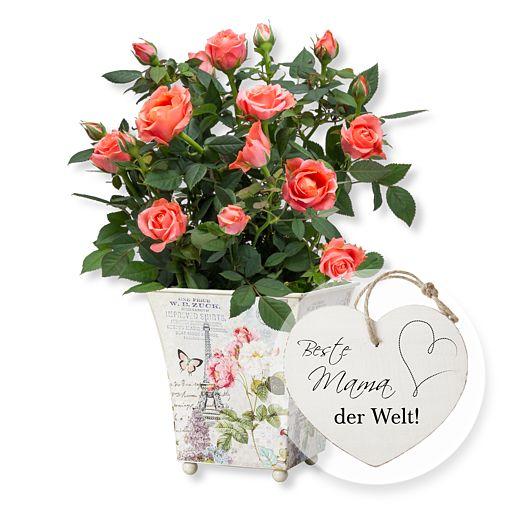 Orangefarbene Rose im romantischen Nostalgie-Topf und Vintage-Herz Beste Mama der Welt!