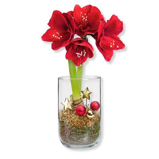 https://www.valentins.de/onlineshop/images/products/515/27358.jpg