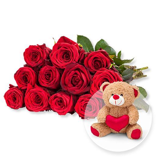 12 rote Fairtrade-Rosen und Love-Teddy