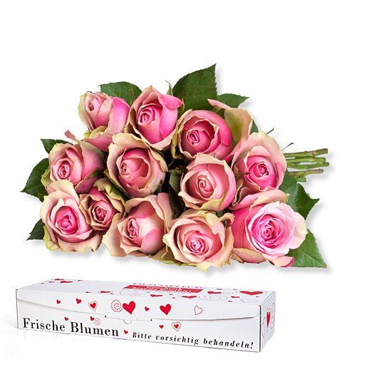 https://www.valentins.de/onlineshop/images/products/515/27367-L27700.jpg
