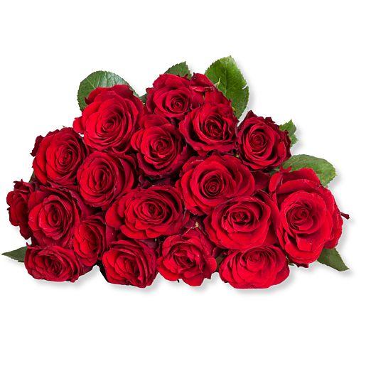 https://www.valentins.de/onlineshop/images/products/515/27369.jpg