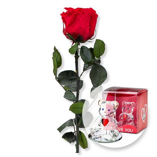 https://www.valentins.de/onlineshop/images/products/515/27379-27395.jpg