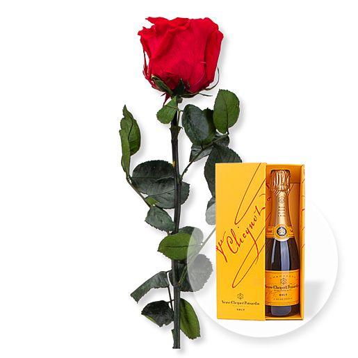 https://www.valentins.de/onlineshop/images/products/515/27379-7925.jpg