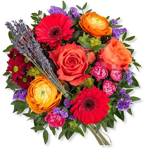 Nützlichblumen - Farbenfreude - Onlineshop Valentins