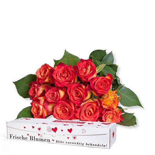 https://www.valentins.de/onlineshop/images/products/515/27493-L27700.jpg