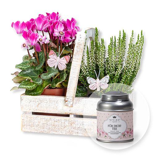 Herbstlicher Pflanzengruß im rustikalen Holztopf und Tafelgut Für Dich Tee
