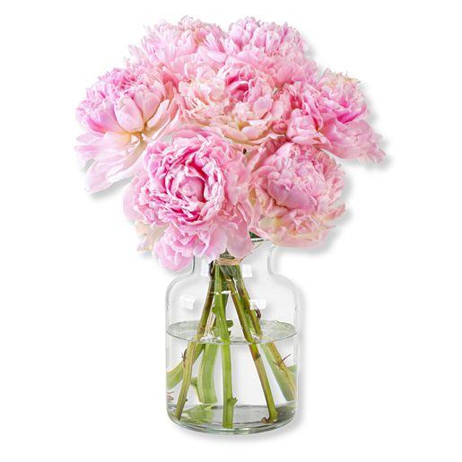 Nützlichblumen - Pfingstrosen Traum - Onlineshop Valentins