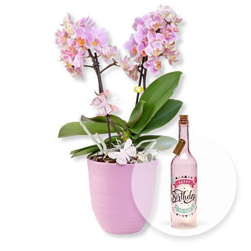 Nützlichblumen - Rosa Orchidee im fliederfarbenem Keramiktopf und Pinke Glasflasche Happy Birthday mit LED - Onlineshop Valentins