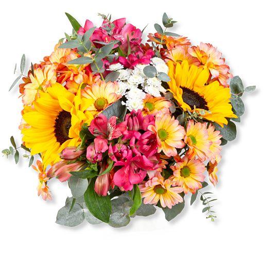Nützlichblumen - Sunny Day - Onlineshop Valentins