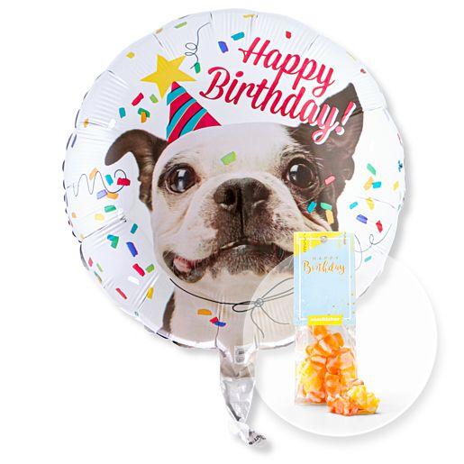 Partybedarfballons - Ballon Happy Birthday Hund und Fruchtgummi Happy Birthday - Onlineshop Valentins