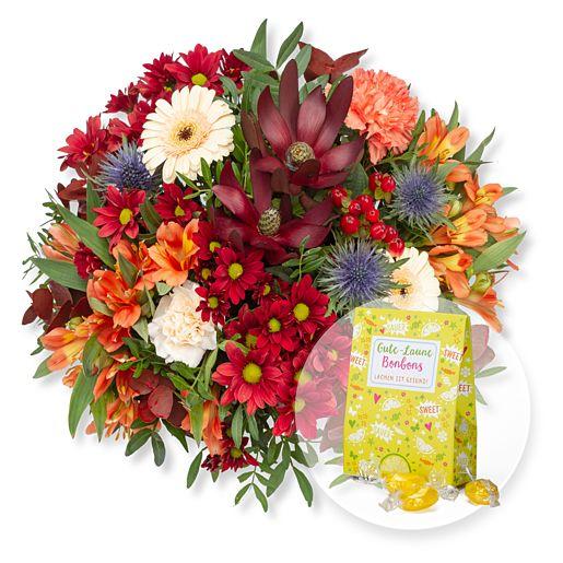 Nützlichblumen - Bunte Freude und Gute Laune Bonbons - Onlineshop Valentins