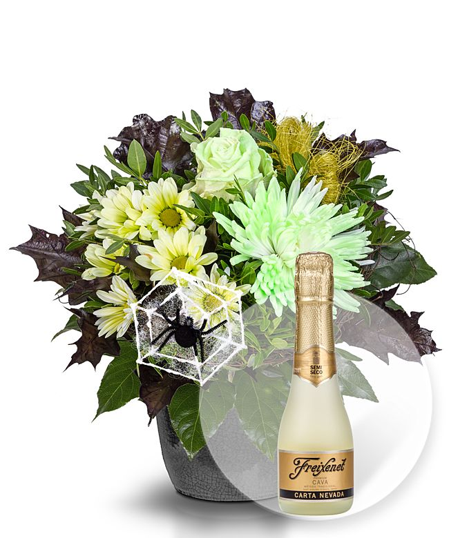 Happy Halloween Glowing in the Dark und Freixenet Semi Seco - jetzt bestellen bei Valentins