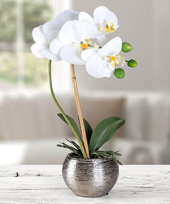 Künstliche Orchidee in silberfarbenem Topf - jetzt bestellen bei Valentins
